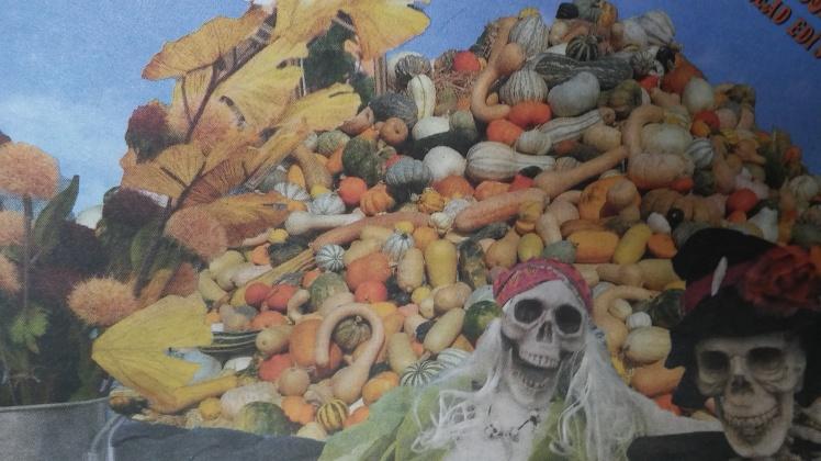 Halloween2-Sophie
