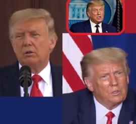 TrumpBestHairStyle