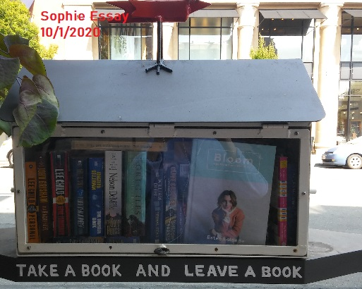 SophieSmallLibraries